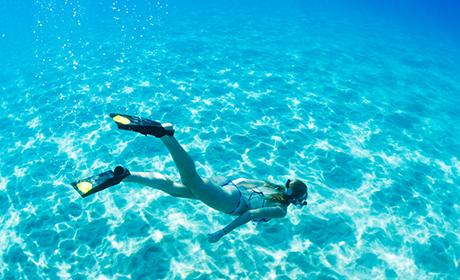 美しい珊瑚礁や可愛いお魚達がお出迎え